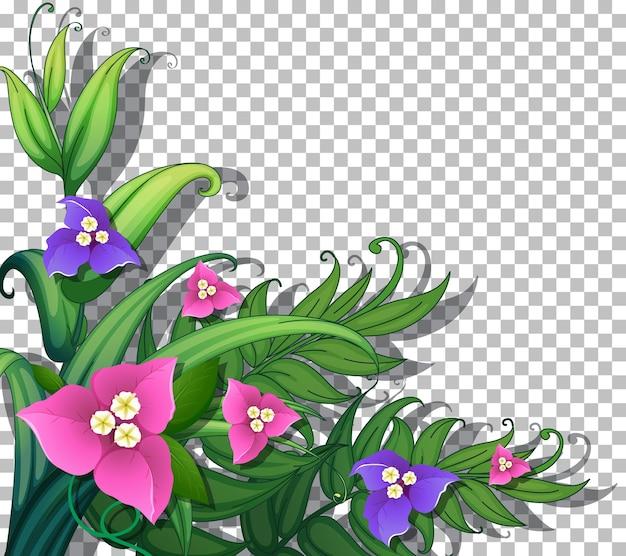 透明な背景の葉を持つ熱帯の花 Premiumベクター