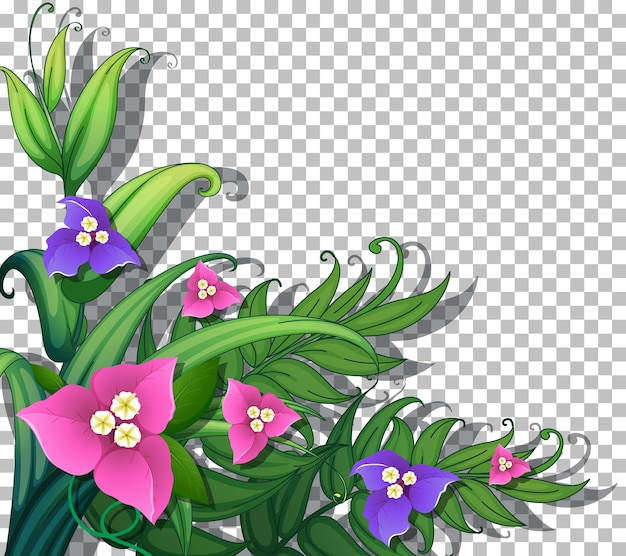 Tropical flowers with leaves on transparent background