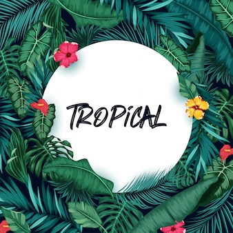 Tropical forest background with round paper