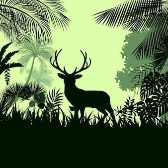 ジャングルの野生の鹿と熱帯雨林の背景