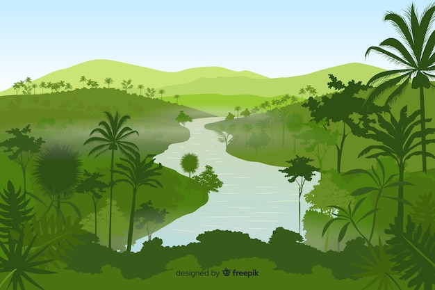 Tropical forest landscape background
