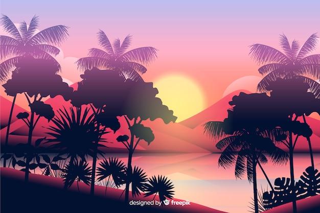 日の出の景色と熱帯林の風景