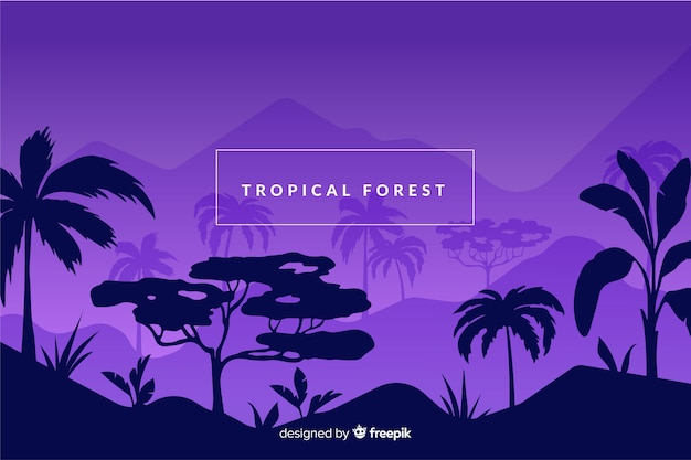 Tropical forest at night background