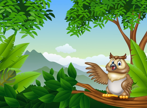 Tropical forest with cartoon owl waving