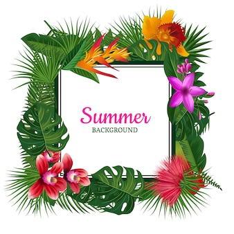 Tropical frame with place for text
