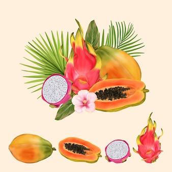 피 타야와 파파야와 열 대 과일 꽃다발
