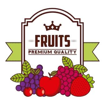 Дизайн тропических фруктов, векторная графика eps10 graphic