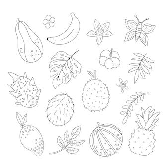 トロピカルフルーツ、花、葉の輪郭。ジャングルの葉と花柄の黒と白のイラスト。分離された手描きの平らなエキゾチックな植物