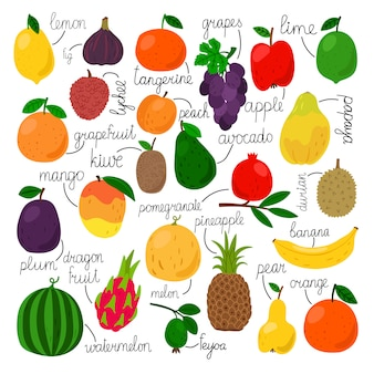 Набор тропических фруктов со знаками