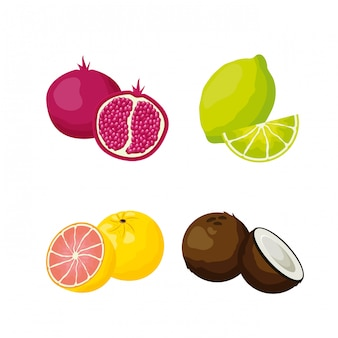 Фон тропических фруктов