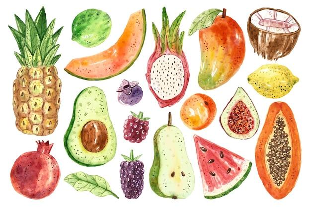 トロピカルフルーツのクリップアート。パパイヤ、ココナッツ、ブラックベリー、ラズベリー、パイナップル、アボカド、メロン、ドラゴンフルーツ、スイカ、アプリコット、イチジク、レモン、ライム、ブルーベリー、洋ナシ、ザクロ。