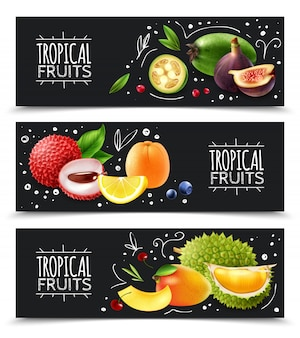 Tropical fruits horizontal banners