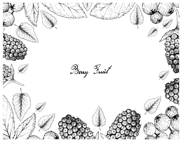 Tropical fruits illustration frame of hand drawn sketch