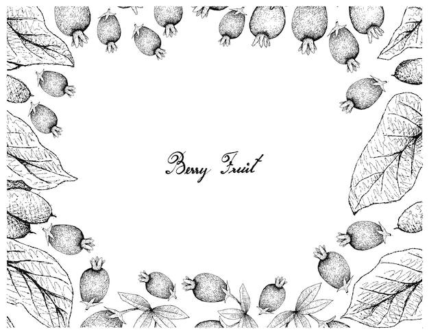 Рамка иллюстрации тропических фруктов рисованной эскиз