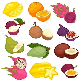 Tropical fruits set.