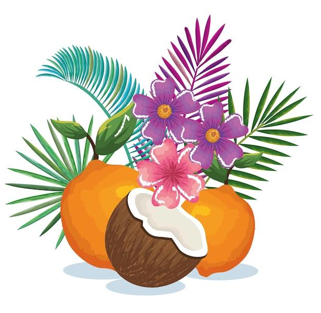 オレンジとココナッツのトロピカルガーデン