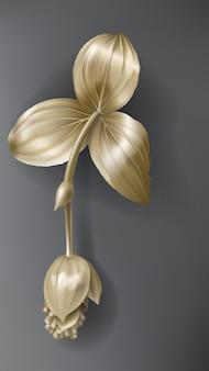 Тропический золотой цветок мединиллы на темно-черном