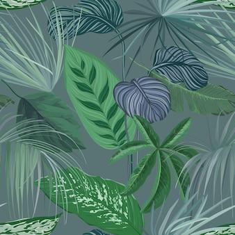 필로덴드론과 몬스테라 열대우림 식물이 있는 열대 녹색 배경, 이국적인 정글 스파티필룸 캐니폴리움 잎이 있는 자연 꽃 벽지 인쇄, 매끄러운 장식. 벡터 일러스트 레이 션