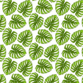 Бесшовный узор из тропических зеленых листьев на белом фоне