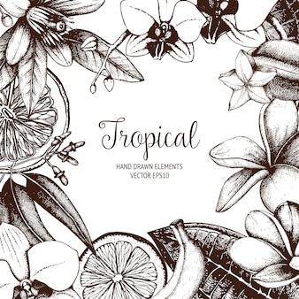 トロピカル。手は、エキゾチックな植物のビンテージフレームをスケッチしました。