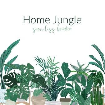 鉢植えの熱帯観葉植物、都会のジャングルのシームレスな国境