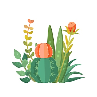 Tropical house plants and cactus composition, vector