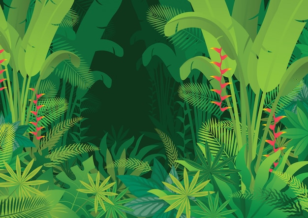 Tropical jungle dark background, forrest, rainforest, plant and nature