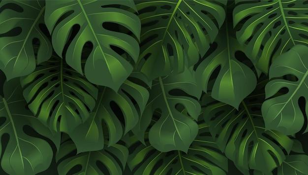열대 정글 monstera 나뭇잎 패턴