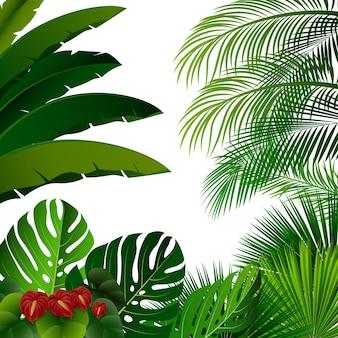 白い背景に熱帯ジャングル