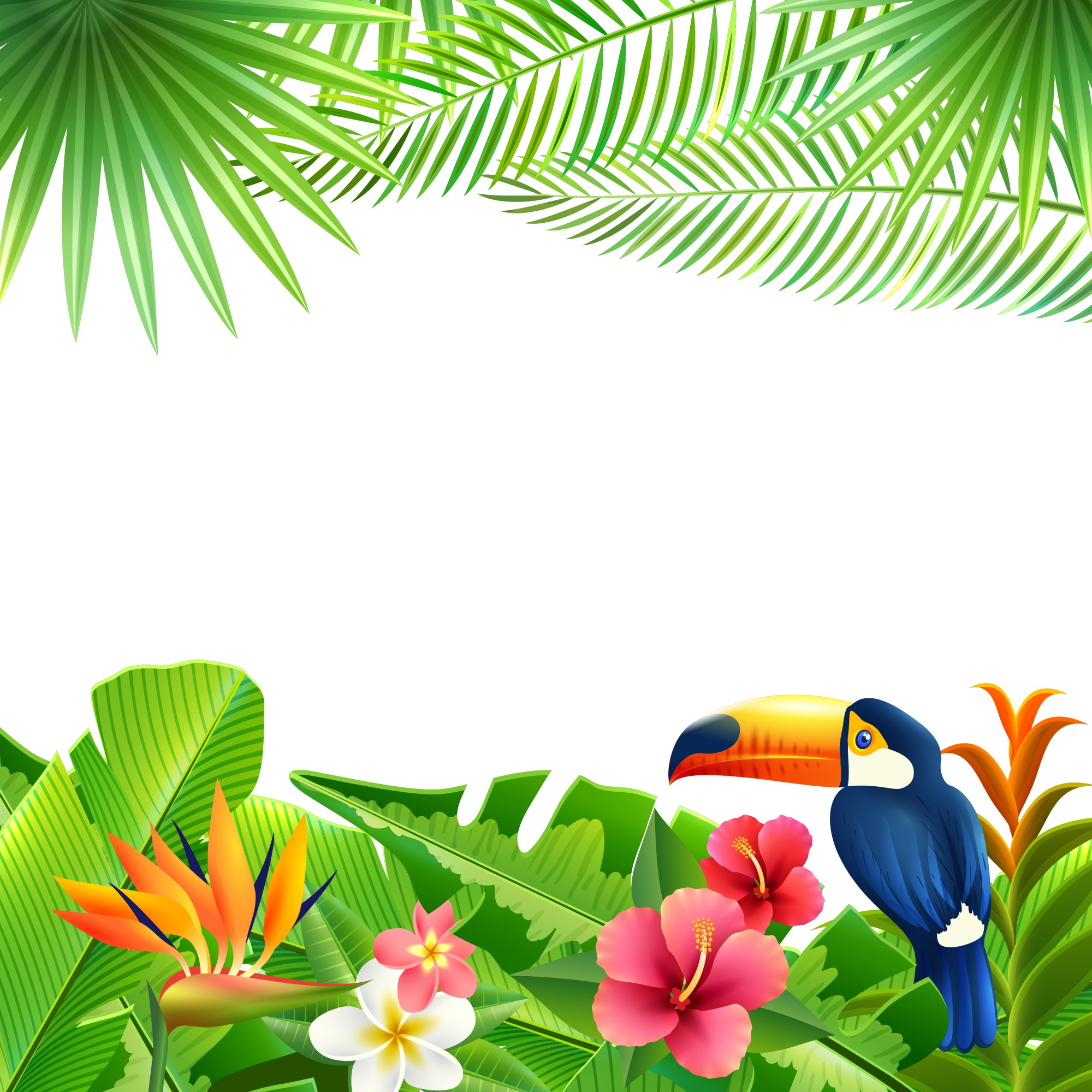 Tropical Landscape Background