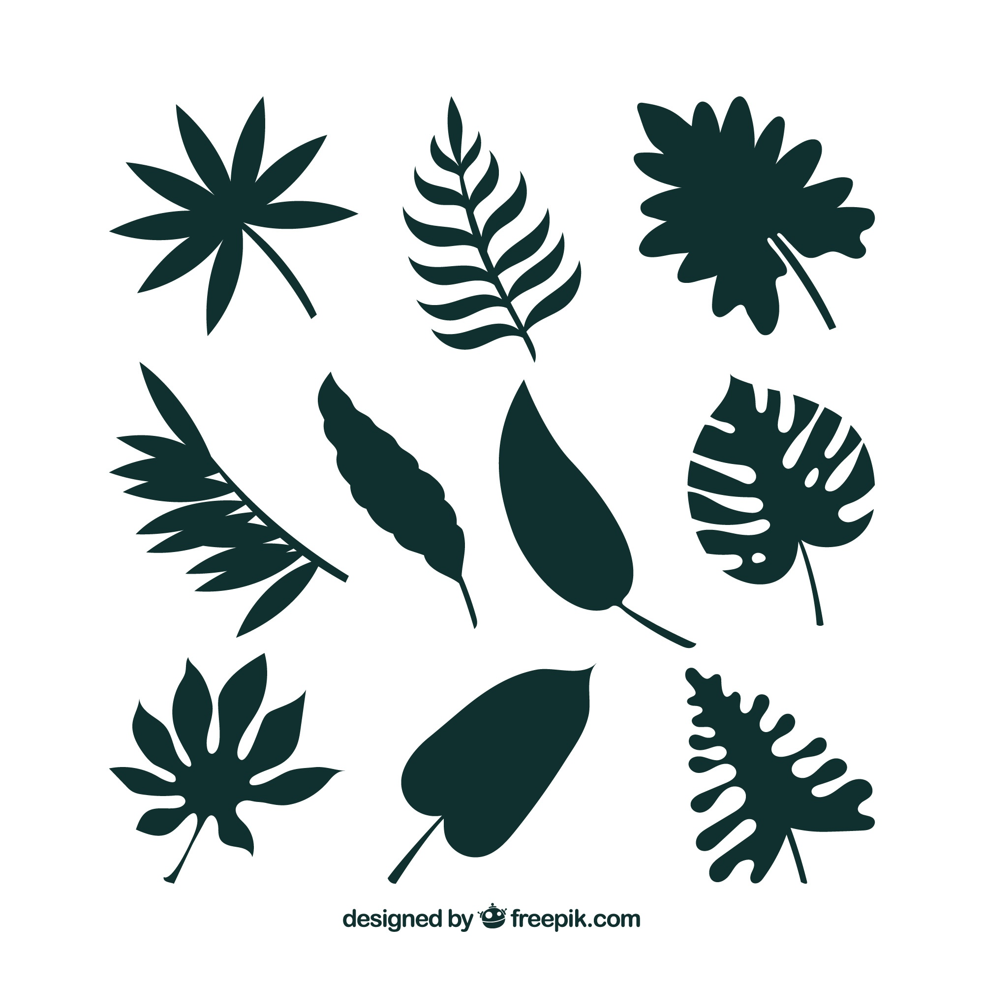 Tropical leaf collection with silhouette style