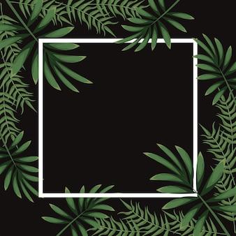 사각 프레임에 열대 잎