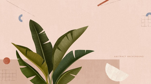 Tropical leafs on pink geometric background in 3d illustration