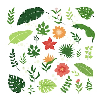 熱帯の葉と花の要素のセット、シンプルでトレンディなスタイル