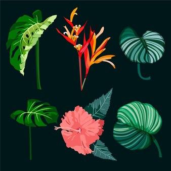 熱帯の葉と花のパックスタイル