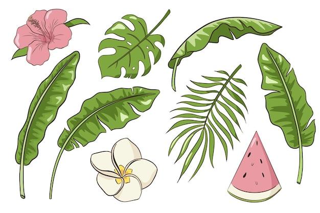 熱帯の葉と花のセット。手描きのエキゾチックな植物や花のコレクション。バナナ、ヤシとモンステラの葉、ハイビスカス、プルメリアとバニラの花、スイカのスライス。プレミアムベクトル