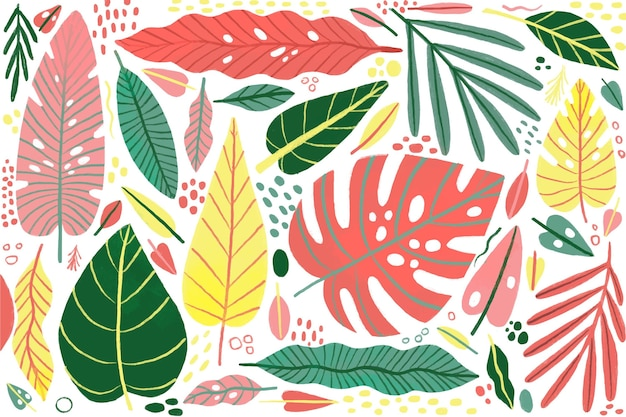 Tropical leaves background concept