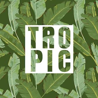 熱帯の葉の背景。エキゾチックなグラフィック