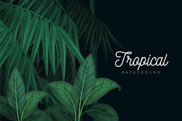 Тропические листья стиль фона