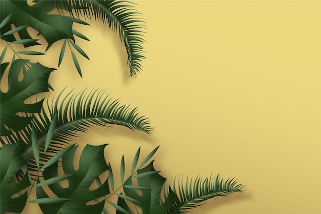Tropical leaves background theme