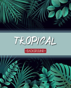 Tropical leaves background with jungle plants
