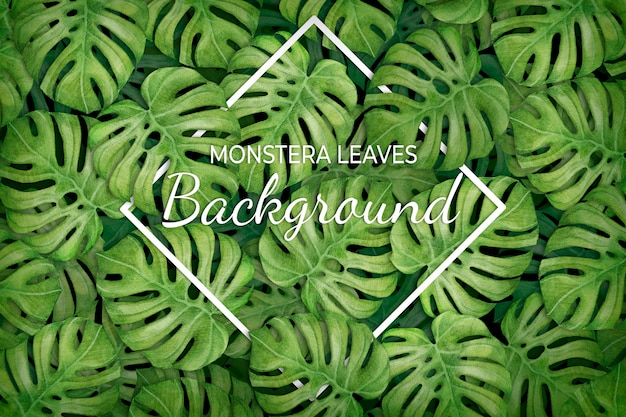 Tropical leaves background with rhombus