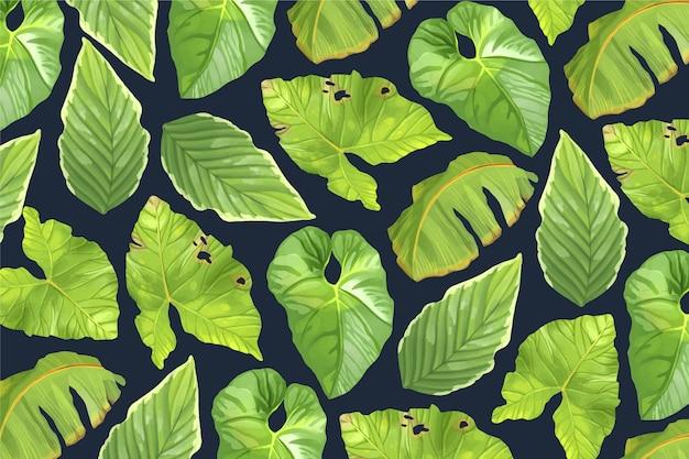 열 대 잎 배경