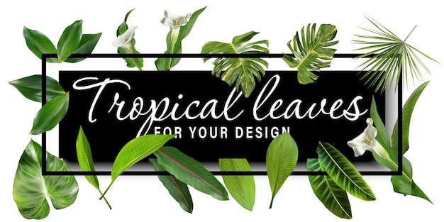 Tropical leaves banner