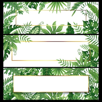 Tropical leaves banners. exotic palm leaf banner, natural coconut palms branch frames and jungle plants  background  set