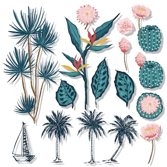 Tropical leaves coconut palm trees and cactus flower