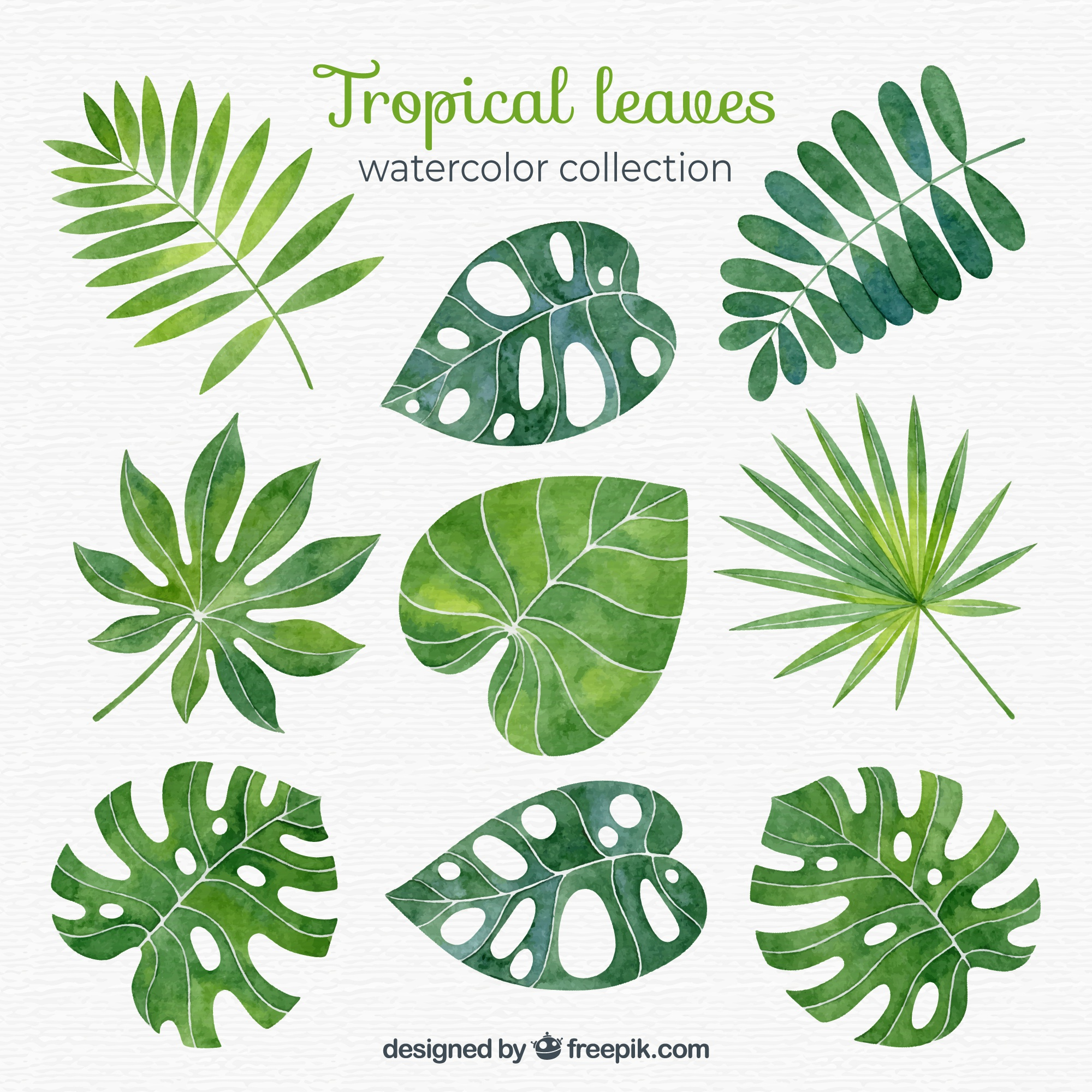 Tropical leaves collection in watercolor style