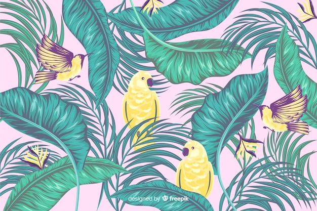 Tropical leaves and exotic birds background