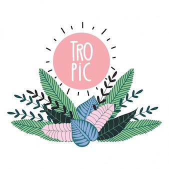 Креативная эмблема экзотической ботанической листвы тропических листьев