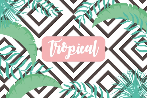 Тропические листья экзотической ботанической листвы, зелень, геометрический рисунок